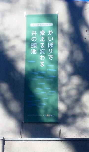 Sh3g0911