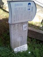 Ca330167_1